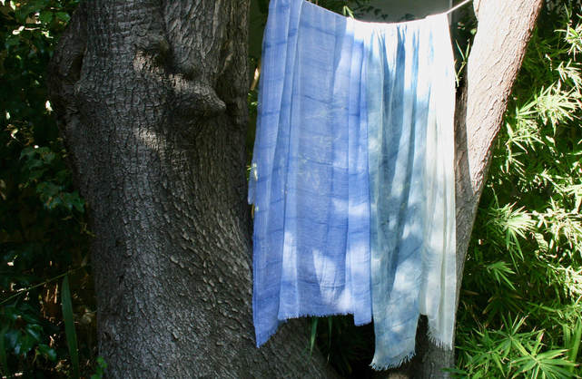 Shibori Indigo scarves drying