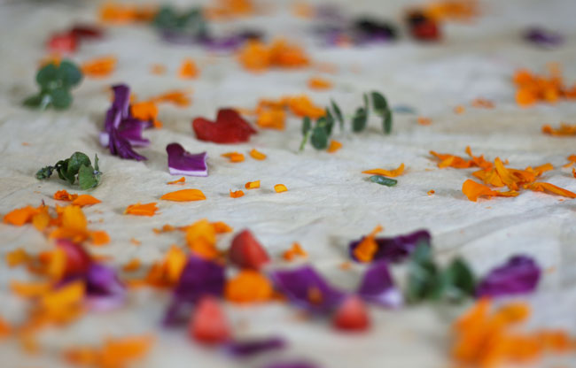 Marigolds, red cabbage, and eucalyptus on peace silk